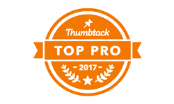 top-pro-badge-150.png